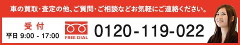 0120-119-022